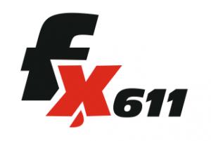 fx611-300x201 fx611  Skylark